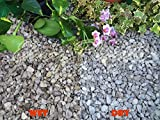 20KG Gravel Chippings Stone Slate Deter Weed Garden Patio Pathway Plant Topping - Dove Grey Peakstone (10-20mm) - Easy Plants - amazon.co.uk