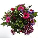 FloraAtHome - Strauß - Kim Extra Large Purple (22 Stücke)
