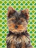 Caroline 's Treasures kj1202chf St. Patrick 's Day Shamrock Yorkie Puppy/Yorkshire Terrier Leinwand House Flagge
