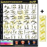 Eazy Comment à poids d'exercice Fitness Poster Big 50,8x 71,1cm Train Endurance, tonalité, résistance et Construction Musculaire Maison Gym Tableau