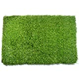 Klera Artificial Grass Doormat (23X15 Inches) - Welcome Mat For Entrance Way - Outdoors and Indoors