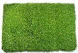 Best Indoor Mats - Klera Artificial Grass Doormat (23X15 Inches) - Welcome Review