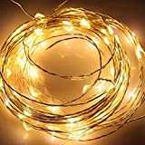 Angelina(TM) 2 ×Set 5M 50 LEDs Battery Powered String Lights Silver Wire Fairy Lights Christmas Decoration Indoor Use Warm White
