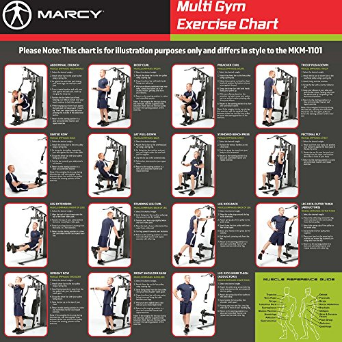 Marcy Home Gym Workout Chart – Blog Dandk