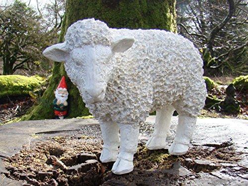 Spiky moutons blancs ou sur le côté ~ Ornement de jardin en résine