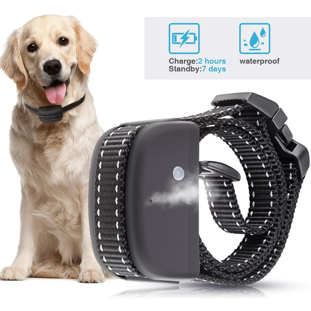 Wango Bark Collar,Training Collar Rechargeable & Waterproof, Harmless Citronella Spray Anti Barking Collars