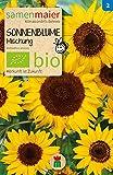 Sonnenblume Mischung | Bio-Sonnenblumensamen