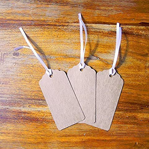 Pack of 100 Kraft Tags, Gift, Wedding, Wish Tree Tags
