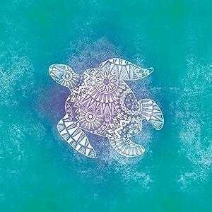 Nintendo DS Case Skin Sticker aus Vinyl-Folie Aufkleber Mandala Turtle Schildkröte Muster