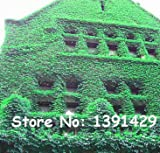 1 bolsa = 20 piezas coloridas Boston Ivy arce japonés semillas de las enredaderas de planta trepadora para DIY Hogar y jardín exterior Plantas