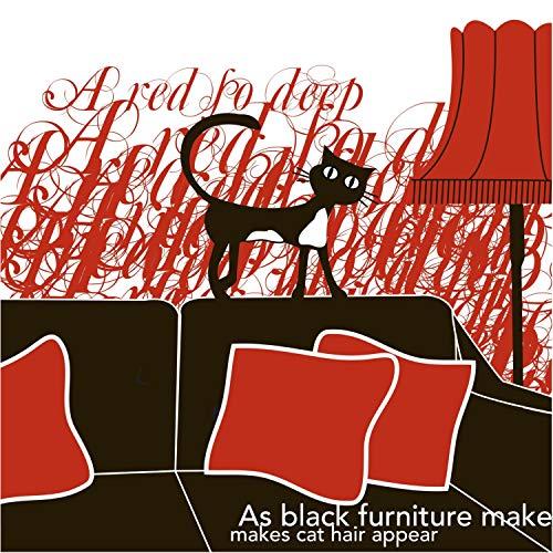 As Black Furniture Makes Cat Hair Appear