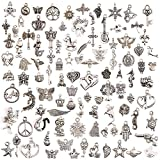 JuanYa 100 Pcs Silver Plated Mixed Charms DIY - Best Reviews Guide