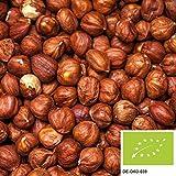 61eR36GfszL. SL160  - Wie gesund sind Nüsse?