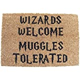 Harry Potter ispirato Wizards Welcome Muggles Tolerated Welcome zerbino