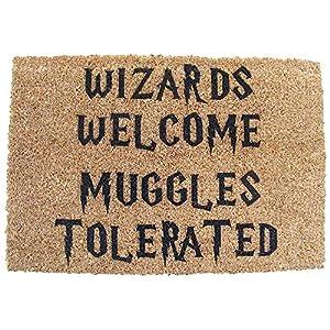 HARRY POTTER INSPIRED WIZARDS WELCOME MUGGLES TOLERATED DOOR MAT 25