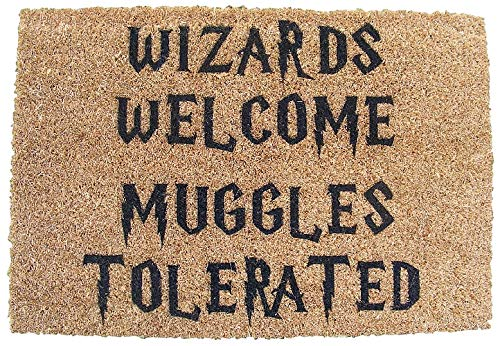 HARRY POTTER INSPIRED WIZARDS WELCOME MUGGLES TOLERATED