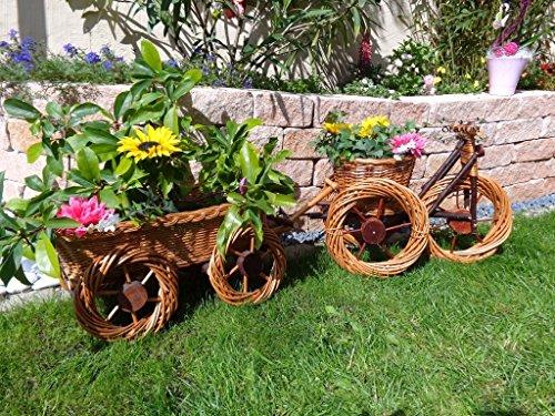 2 Stück: Dreirad,Rad/Trike+Leiterwagen braun hell 45 + 65 cm, Korbgeflecht, WETTERFEST**, witzige Gartendeko 100% NATUR, ideal als Pflanzkasten, Blumenkasten, Pflanzhilfe, Pflanzcontainer, Pflanztröge, Pflanzschale, Rattan, Weidenkorb, Pflanzkorb, Blumentöpfe, Holzschubkarre, Pflanztrog, Pflanzgefäß, Pflanzschale, Blumentopf, Pflanzkasten, Übertopf, Übertöpfe, , Holzhaus Pflanzgefäß, Pflanztöpfe Pflanzkübel