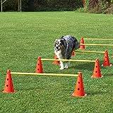 Agility-Hürde, rot/gelb, mit Tragetasche, 5 Hürden für Agility - Hundetraining