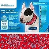Kühlhalsband für Hunde - kühlendes Halsband - Gr. L - Red Western