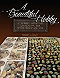 A Beautiful Hobby (English Edition)