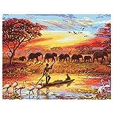 shukqueen DIY Ölgemälde, Erwachsene 's Malen nach Zahlen Kits, Acryl Gemälde afrikanischen Steppe 40,6x 50,8cm, Framed Canvas