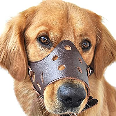 ubest Adjustable Leather Dog Muzzle, Safety Pet Muzzles Mask Prevent Biting Chewing Barking 2 Colors S-XXL from ubest