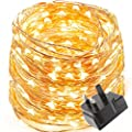 LE Waterproof 10m 100 LED Copper Wire Lights, Power Adapter Included, Fairy Starry String Lights, Warm White,Decorative Rope Lights for Christmas, Party, Valentine's Day, Wedding, Garden, Festival