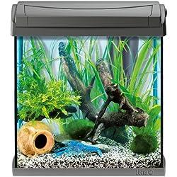 Tetra Aquarium AquaArt Anthracite Poissons eau douce tropicale/Poissons eau froide Noir, 30L