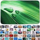 Sanilo Badteppich, viele schöne Badteppiche zur Auswahl, hochwertige Qualität, sehr weich, schnelltrocknend, waschbar (70 x 120 cm, Green Leaf)
