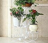 Pflanzentreppe Blumenstander Metall Blumenbank 3 Stufen S-förmig Design Garten Terrasse (Weiß)