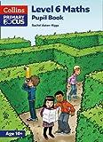 Collins Primary Focus Maths - Level 6 Maths: Pupil Book