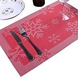 ERIOINP Placemats Copo de Nieve Tejido Vinilo Placemat para la Mesa de la Cocina Resistente al Calor Antideslizante Esteras de la Mesa de la Cocina Fácil de Limpiar (2 Piezas)