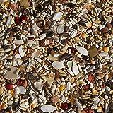 #10: VEBFAA Conure Mix for birds, 900 grams