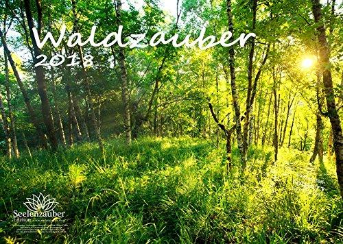Premium Kalender 2018 · DIN A3 · Waldzauber · Wald · Bäume · Baum · Edition Seelenzauber