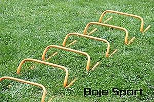 agility sport pour chiens - lot de 6 mini-haies, hauteur: 16 cm