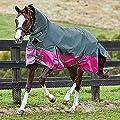 Weatherbeeta Comfitec Plus Lite Dynamic Combo Pferdedecke mit Hals