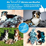 Bluepet Hundebürste / Unterfellbürste – Antiallergisch, befreie deinen Liebling von Unterwolle – Innovatives Design – Entfilzen und Trimmen zugleich für optimale Fellpflege - 3