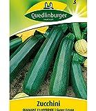 Zucchini 'Diamant' F1, 1 Tüte Samen