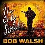Songtexte von Bob Walsh - The Only Soul