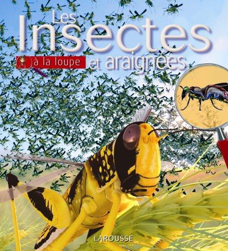 Insectes et araignées par Collectif