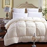 MMM Winter Student Dorm Room Lammfell Quilt Thicker Keep Warm Individuelle Frühling und Herbst Quilt Core Baumwolle Bettwäsche ( Farbe : Beige , größe : 150*200cm(2.5kg) )