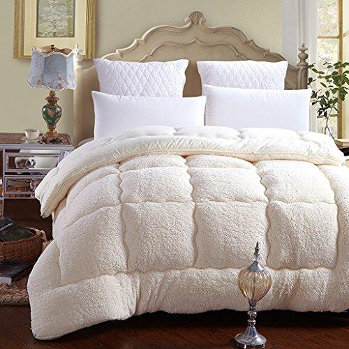 MMM Winter Student Dorm Room Lammfell Quilt Thicker Keep Warm Individuelle Frühling und Herbst Quilt Core Baumwolle Bettwäsche ( Farbe : Beige , größe : 150*200cm(2.5kg) ) -