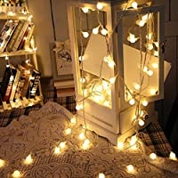 WOOCIKA Catene Luminose, 10M 100 LED Calda Catena di Luci per Feste, Pergole, Matrimonio, Giardino Decorazione, Spina Europea