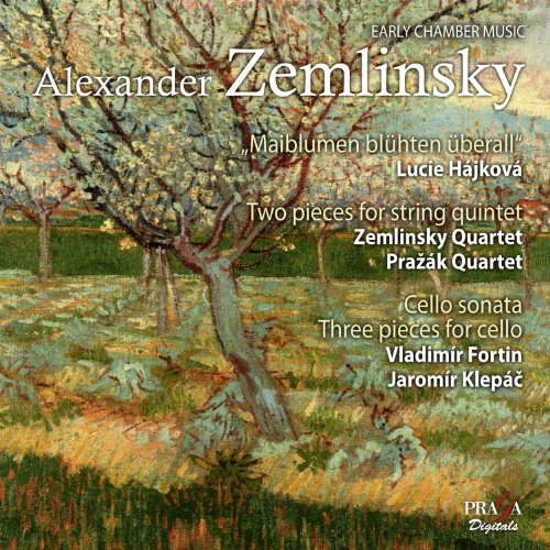 Zemlinsky - Musique de chambre