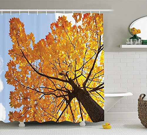 Jolly2T Leaves Decor Shower Curtain Set, Autumn Maple Tree from The Bottom to Top View Environment Flora Season November Print, Bathroom Accessories, 60x72 Inches, Orange Blue -