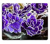 Telecharger Livres MSD en caoutchouc naturel Tapis de souris Image ID 28132857 Mini Fruits a tarte et fond en bois 443 (PDF,EPUB,MOBI) gratuits en Francaise