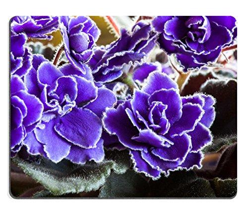 msd-gaming-tapis-de-souris-en-caoutchouc-naturel-dimage-28133590petit-dlicat-violet-blanc-avec-une-f