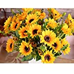 Our AmyHomie artificial flower bouquet can be use to decorate wedding, rooms, countyards, and any place you want to decorate. They can add some romantic elements into your life and colorful your life. Welcome you to buy it. Attention notice: 1.Please...