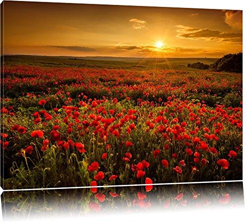 Pracht Gerahmt (Mohnblütenfeld bei traumhaftem Sonnenuntergang Format: 120x80 auf Leinwand, XXL riesige Bilder fertig gerahmt mit Keilrahmen, Kunstdruck auf Wandbild mit Rahmen, günstiger als Gemälde oder Ölbild, kein Poster oder Plakat)