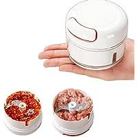 Presse-ail Moulin à viande à l'ail Ail Multipurpos Chopper Coupe-légumes Broyeur de pommes de terre Gadgets maison…